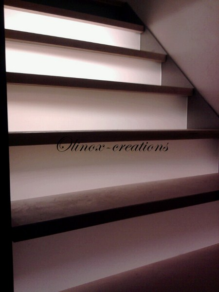 Escalier lille olinox cr ations for Antiderapant escalier interieur