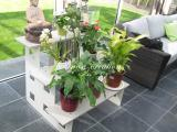 Olinox Creations Escalier pour plantes